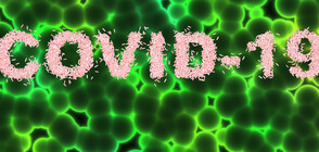 ВЪЛНА ОТ ПОДКРЕПА: Даренията за борба с коронавируса продължават да се трупат