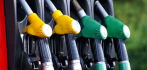 КЗК влезе в Българската петролна и газова асоциация (ВИДЕО)