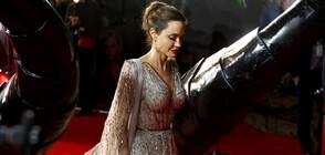 Анджелина Джоли дари 1 млн. долара за храна на деца