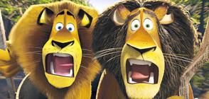 """Забавен съботен следобед с """"Мадагаскар 2"""" и """"Нужни са двама"""""""