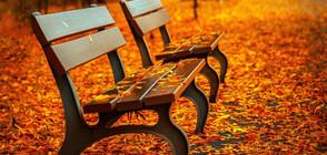 ЗАРАДИ НАРУШЕНИЯ: Събират пейките в бургаските паркове