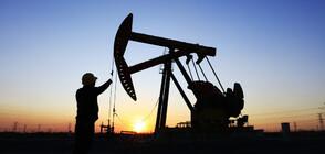 Петролът падна под 20 долара за барел