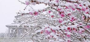 Априлска зима в четвъртък и петък