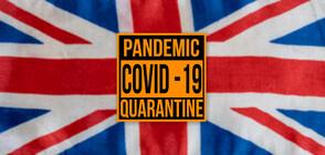 Англия с мрачен рекорд от 563 смъртни случая за ден