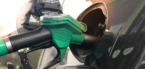 Солидарни ли са бензиностанциите с хората в кризата?