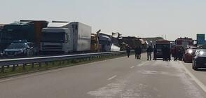 Десетки тирове във верижна катастрофа край Харманли, има загинали (ВИДЕО+СНИМКИ)