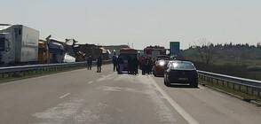 """Възстановиха движението по """"Марица"""" след верижната катастрофа"""
