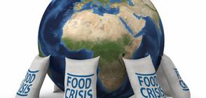 Има опасност карантината по света да предизвика криза с хранителните продукти