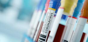 МРАЧЕН РЕКОРД: 833 починали от коронавирус във Франция за денонощие