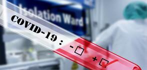 Само за ден: Нови 980 жертви с коронавирус във Великобритания