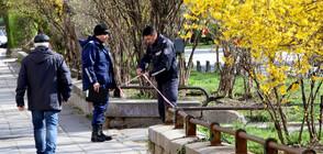 Актове за над 1 млн. лв. за разходки в парковете в София (ВИДЕО)