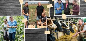 Български производители осигуряват традиционната великденска трапеза в Kaufland
