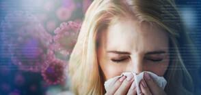 СЕЗОНЪТ НА СЕННАТА ХРЕМА: Как да различим симптомите на алергия към полен от коронавируса?