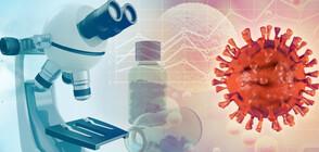 Разузнаването в САЩ: Няма доказателства коронавирусът да е създаден изкуствено
