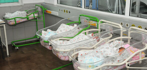 """Шейново"" регистрира ръст на новородените"