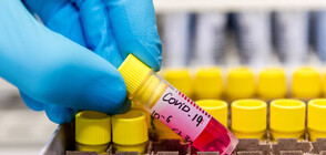 17 са новите случаи на коронавирус у нас, има три нови жертви