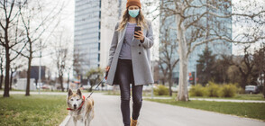 По-чистият въздух в Европа ще спаси поне 11 000 човешки живота