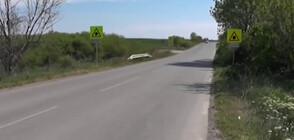 Защо полицаи засичат скорост с радар на отсечка без знак за ограничение? (ВИДЕО)