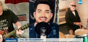 """Queen направиха кавър на """"We Are the Champions"""" в чест на британските медици (ВИДЕО)"""