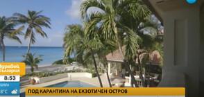 В ИЗОЛАЦИЯ НА КАЙМАНИТЕ: Българка разказва за мерките срещу COVID-19 на екзотичния остров (ВИДЕО)