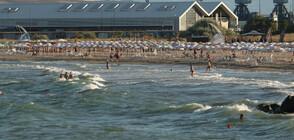 Къде и с колко падат цените на шезлонгите и чадърите на плажа? (ВИДЕО)