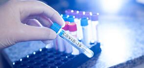 СЗО ще проучи произхода на коронавируса в Китай