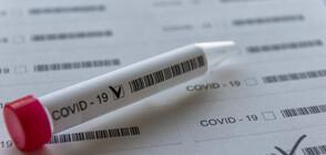 Само 6 положителни за COVID-19 от 443 изследвани (ВИДЕО)