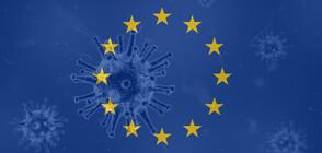 Проф. Румяна Коларова: Солидарността е фундамент за формирането на ЕС