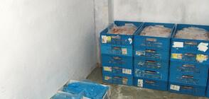 Опасно ли е откритото месо без документи и стигнала ли е част от него до магазините?