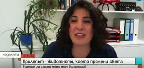 Специалист: Хората в България не могат да се заразят с COVID-19 от прилеп