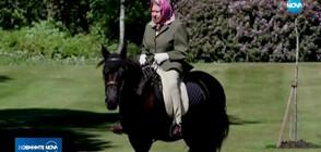 На 94 кралица Елизабет II все още язди (ВИДЕО)