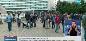 "Екоактивисти протестират срещу строежа на плаж ""Алепу"" (ВИДЕО)"