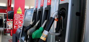 Държавата е загубила 505 млн. лв. недекларирано гориво през 2019 г.