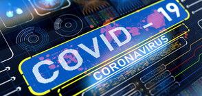 Bulgaria registers 32.8% decrease in COVID-19 cases