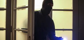 ПОСРЕД БЯЛ ДЕН: Крадци упоиха домашните любимци на семейство и обраха апартамента им