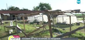Как живеят сезонните работници в с. Шатрово