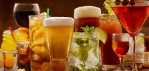 АЛКОХОЛЪТ И ЖЕГИТЕ: Кои напитки са опасни за здравето ни?