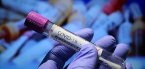 Мегазвезда от Боливуд е с коронавирус