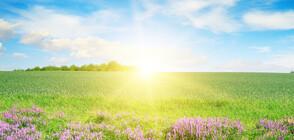 Предстои слънчев и горещ уикенд