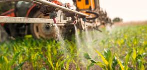 СЛЕД РАЗСЛЕДВАНЕ НА NOVA: ВАП възложи на Танева да провери тровят ли земеделци храната ни