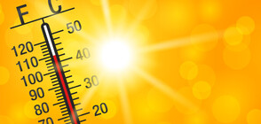 Excessive heat warning for entire country
