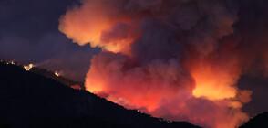 Над 8000 евакуирани заради пожари в Калифорния (ВИДЕО+СНИМКИ)