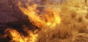 Пожарът край Лесово е преминал Тунджа, има евакуирани