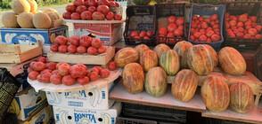 Кои плодове и зеленчуци поскъпнаха през последната седмица?