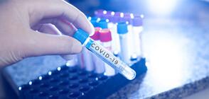 297 новозаразени с коронавирус у нас
