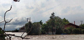 Няколко загинали след бури на гръцкия остров Евбея (СНИМКИ)