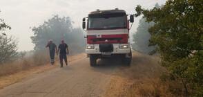Бедствено положение в 5 общини заради нестихващите пожари (ОБЗОР)