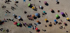В Рио де Жанейро обмислят резервиране на място на плажа чрез мобилно приложение