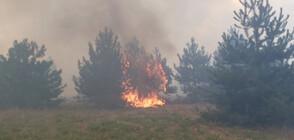 Потушен е пожарът на българо-турската граница