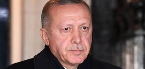 Ядове в семейство Ердоган